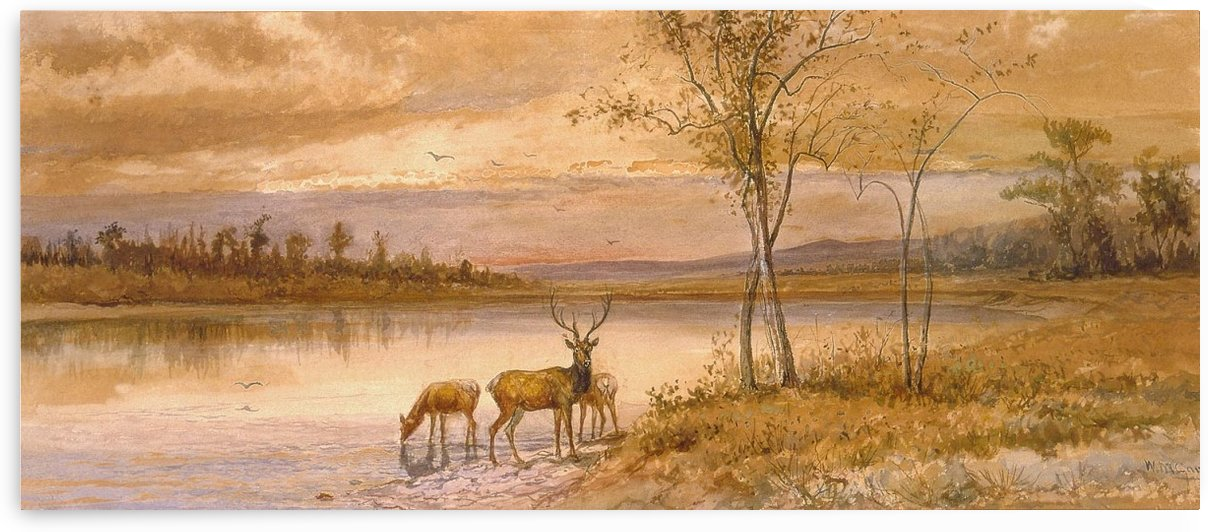Wildlife landscape by William de la Montagne Cary