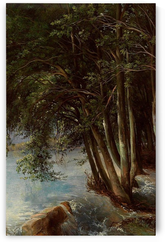 A lovely forest by Alexandre Calame