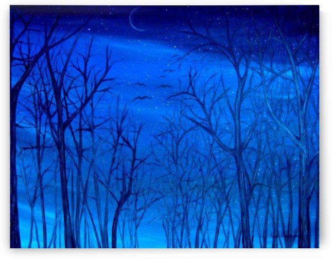 Winter Sky by Faye Anastasopoulou