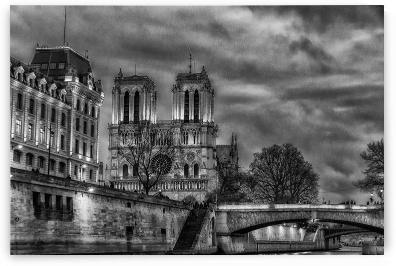 Notre Dame by Andrea Spallanzani