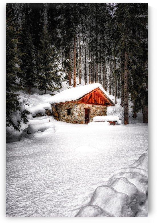 The Alps by Andrea Spallanzani