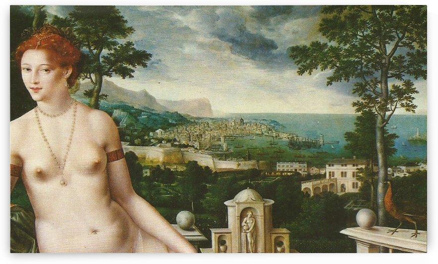 Venus Citerea by Jan Massys