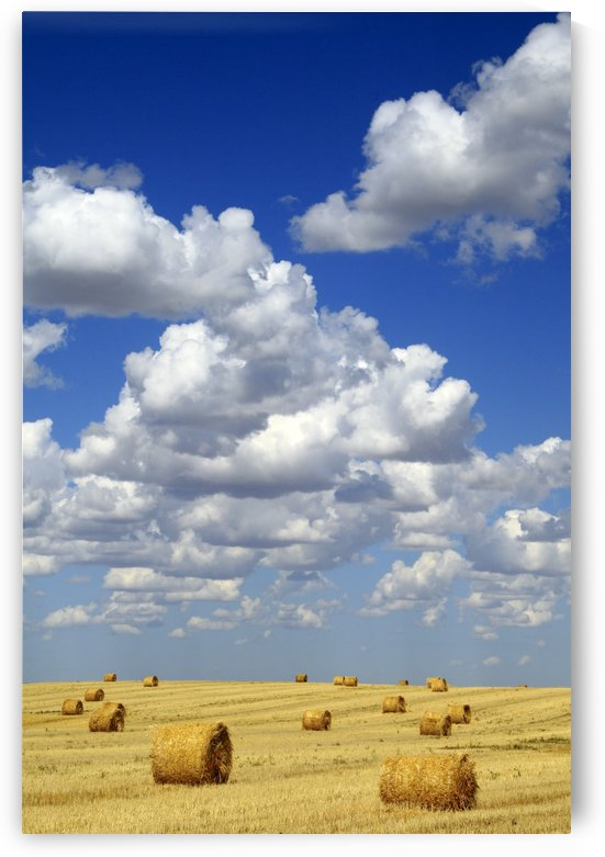 Hay Bales With White Clouds by PacificStock