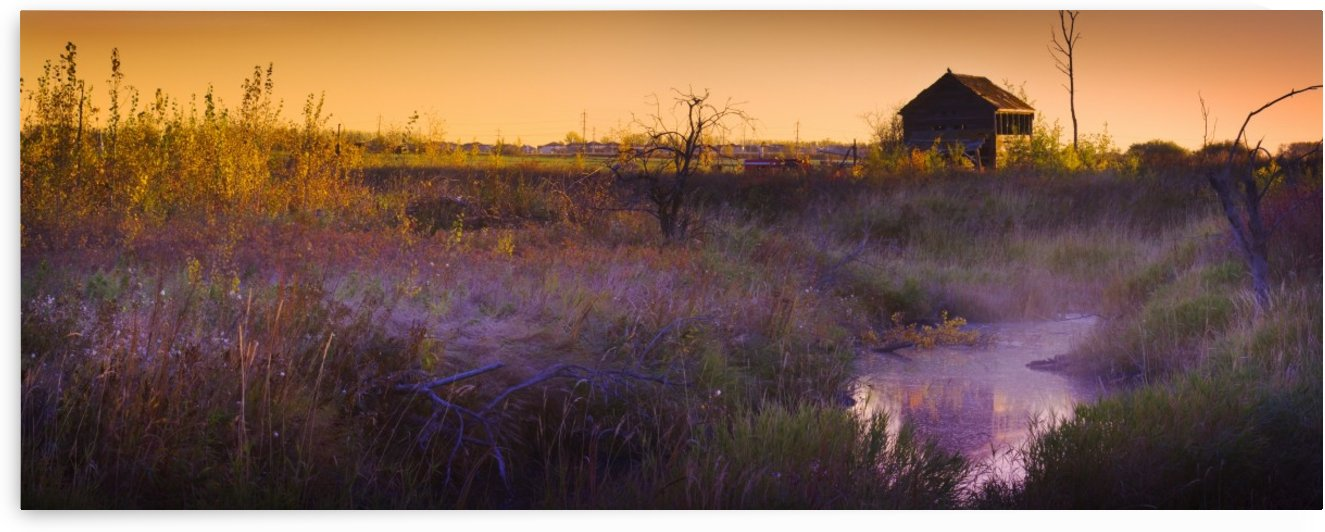 Abandoned Shack At Sunset Near A Creek by PacificStock