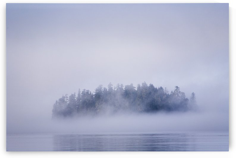 Foggy Island With Spruce Trees Near Pybus Bay, Inside Passage, Southeast Alaska, United States Of America by PacificStock