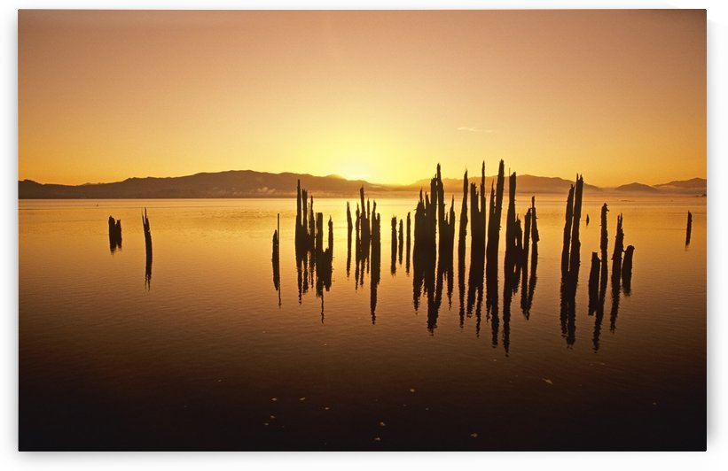 Tillamook Bay At Sunrise, Oregon, Usa by PacificStock