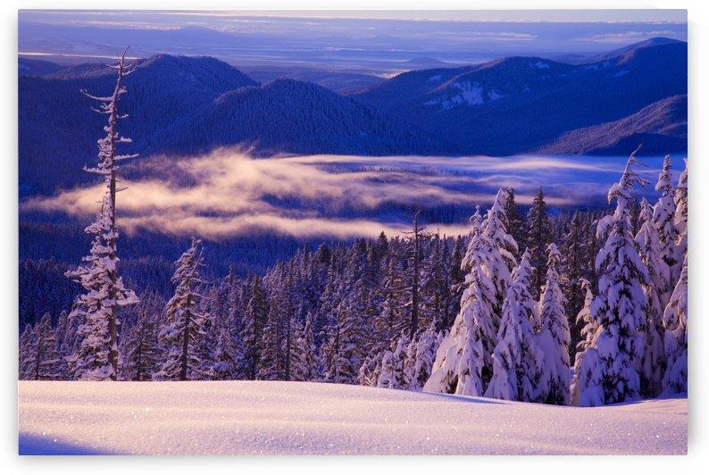 Winter Snow, Cascade Range, Oregon, Usa by PacificStock