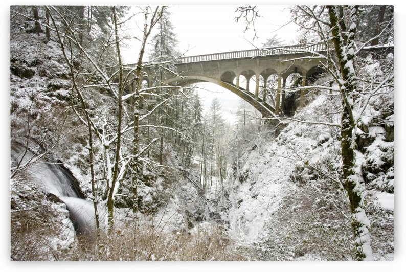 Winter, Shepperd's Dell, Columbia River Gorge, Oregon, Usa by PacificStock