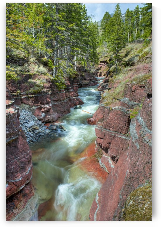 River Through Canyon, Waterton Lakes National Park, Alberta by PacificStock