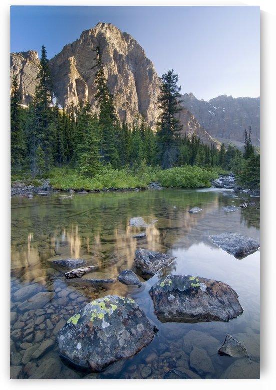Taylor Lake, Banff National Park, Banff, Alberta by PacificStock