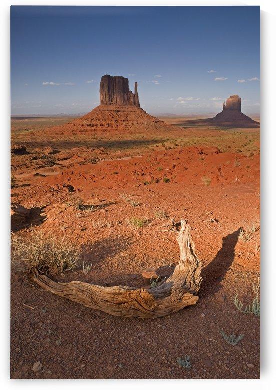 Monument Valley, Kayenta, Arizona, Usa by PacificStock