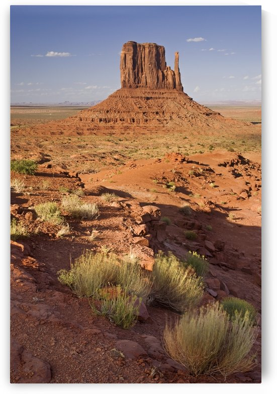 Monument Valley, Colorado Plateau, Arizona, Utah, Usa by PacificStock