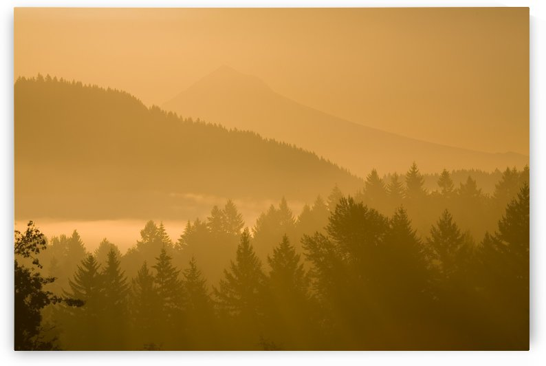 Mount Hood, Oregon, Usa; Silhouetted Landscape At Sunrise by PacificStock