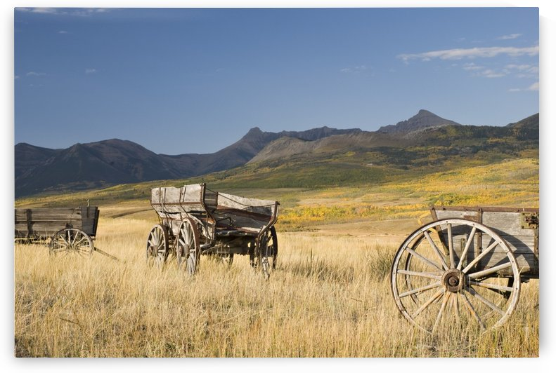 Old Wagons, Foothills, Alberta, Canada by PacificStock
