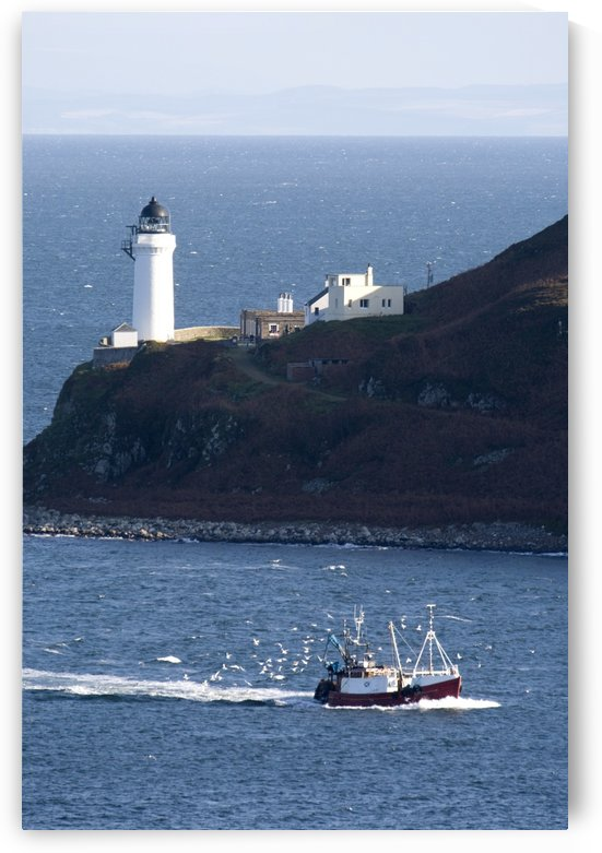Lighthouse On The Coast, Campbeltown Loch, Island Of Davaar, Argyll And Bute, Scotland by PacificStock