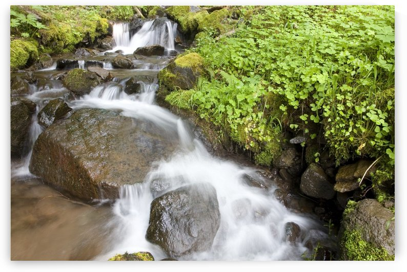 Water Cascading Over Rocks, Mount Hood National Forest, Oregon, United States Of America by PacificStock