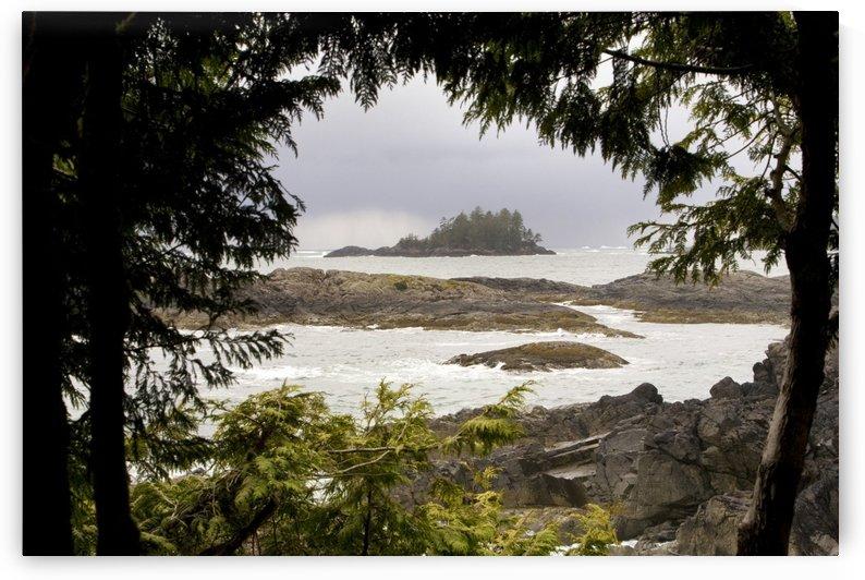 Coastal Scene, Tofino, British Columbia, Canada by PacificStock