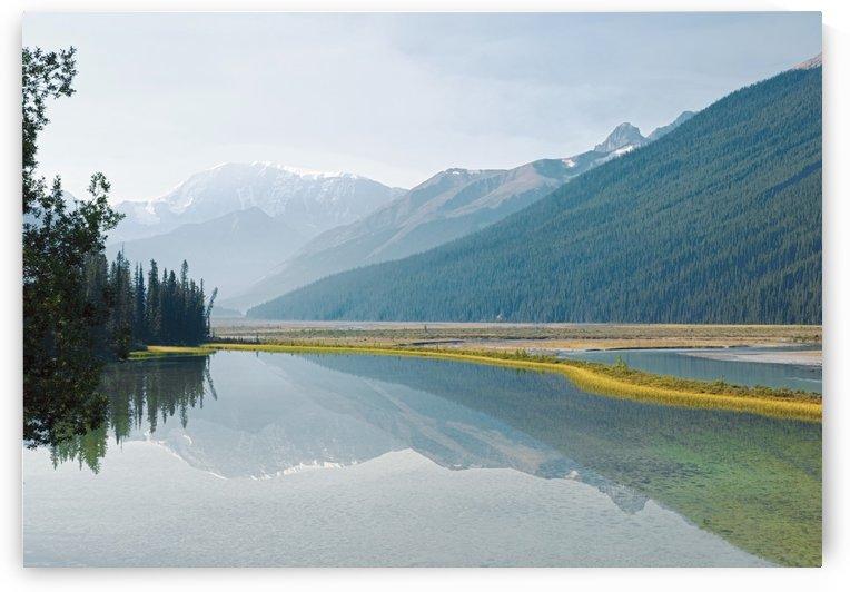 Canadian Rockies Reflected In Beauty Creek, Jasper National Park, Alberta, Canada by PacificStock