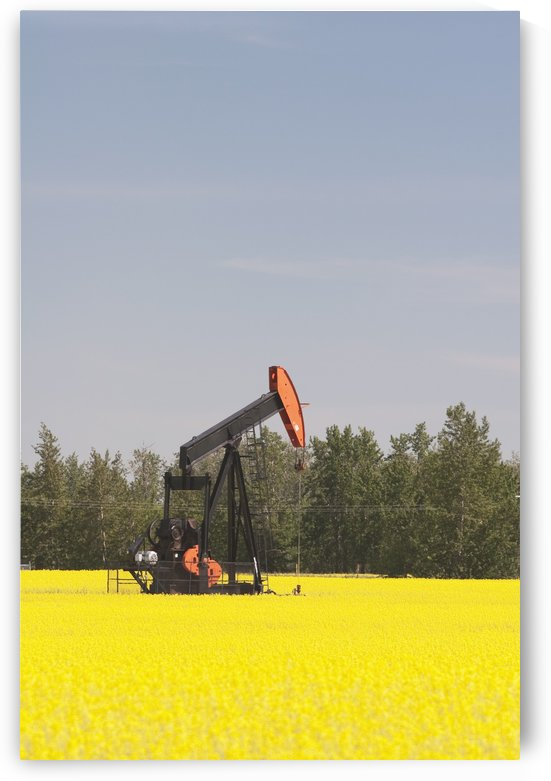 Alberta, Canada; Pump Jack In A Flowering Canola Field by PacificStock