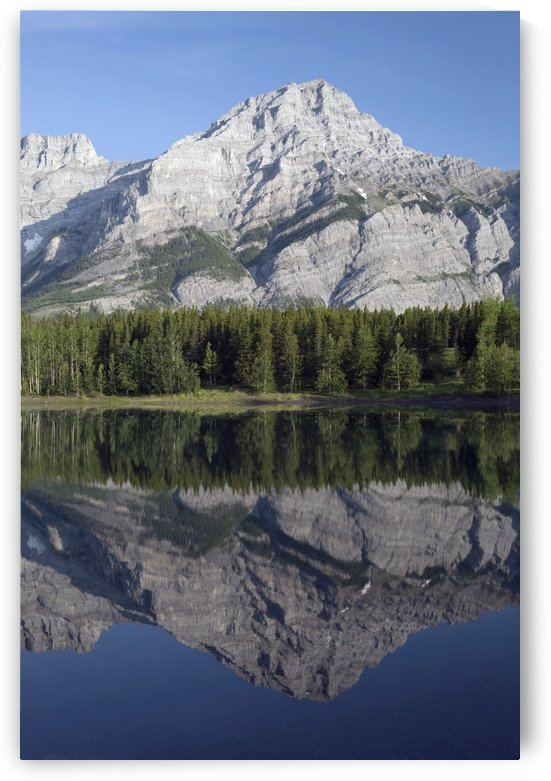 Wedge Pond, Mount Kidd, Kananskis Country, Alberta, Canada by PacificStock