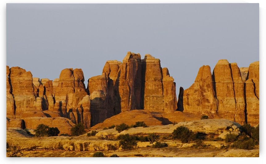 Canyonlands National Park, Utah, United States Of America; Sunrise On The Needles District by PacificStock