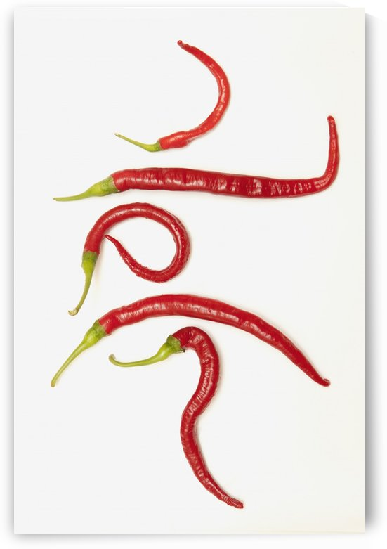 Five Red Jalapeno Peppers That Have Curled Into Unique Shapes by PacificStock