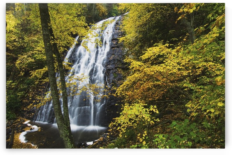 Blue Ridge Parkway, North Carolina, United States Of America; Autumn Colors Around Crabtree Falls by PacificStock