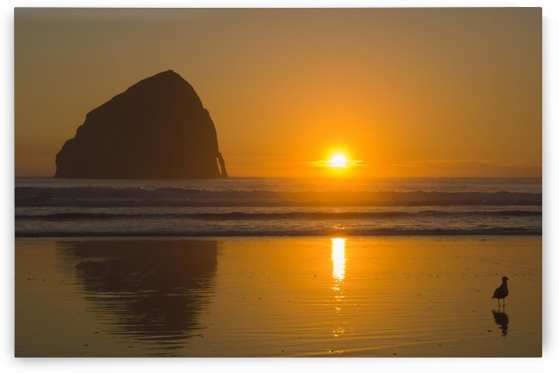 Oregon, United States Of America; Cape Kiwanda And Haystack Rock At Sunset by PacificStock