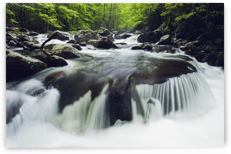 Tennessee, United States Of America; Curved Cascade On The Middle Prong River In The Great Smokey Mountains National Park by PacificStock