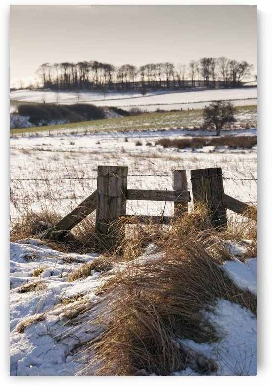 Alnmouth, Northumberland, England; A Field With A Trace Of Snow by PacificStock