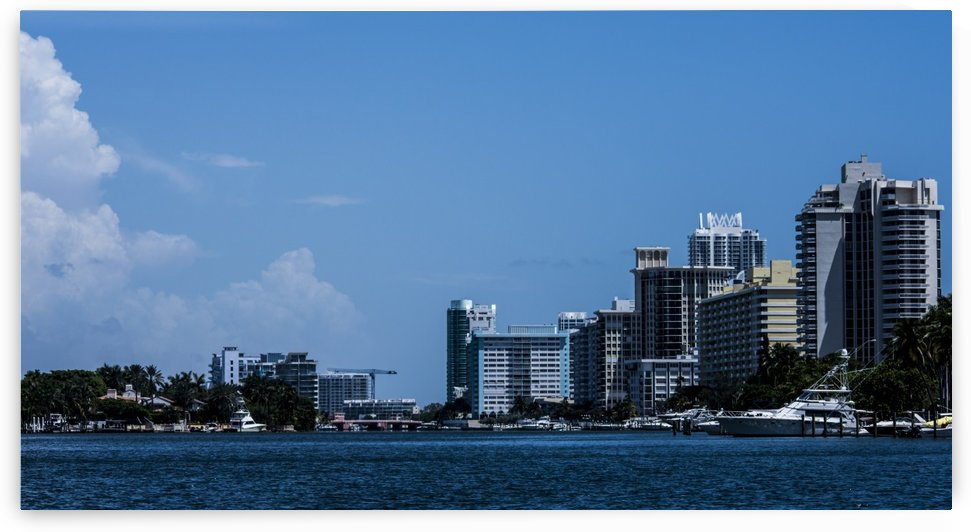 Biscayne Bay by Cameron Young