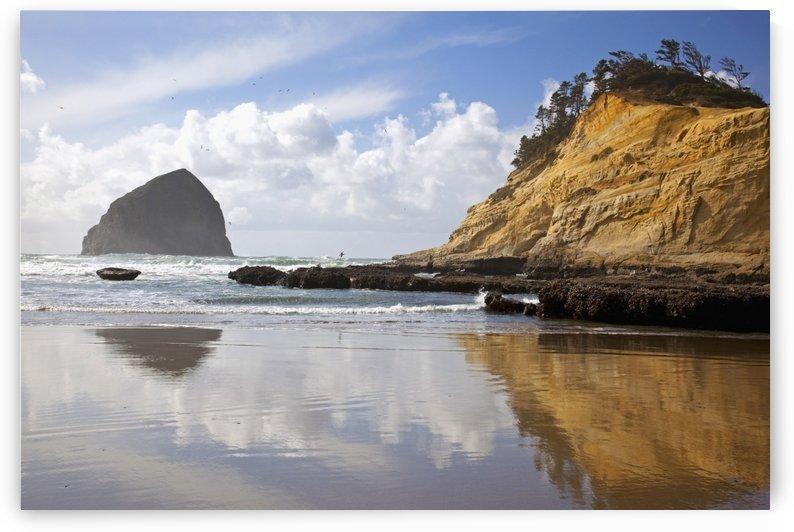 Pacific City, Oregon, United States Of America; Haystack Rock At Cape Kiwanda by PacificStock