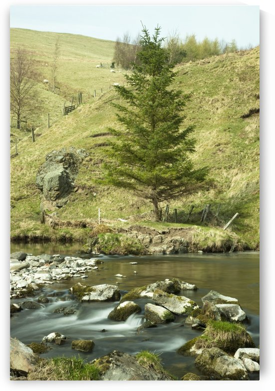 Northumberland, England; A River Flowing Over Rocks By A Hillside by PacificStock