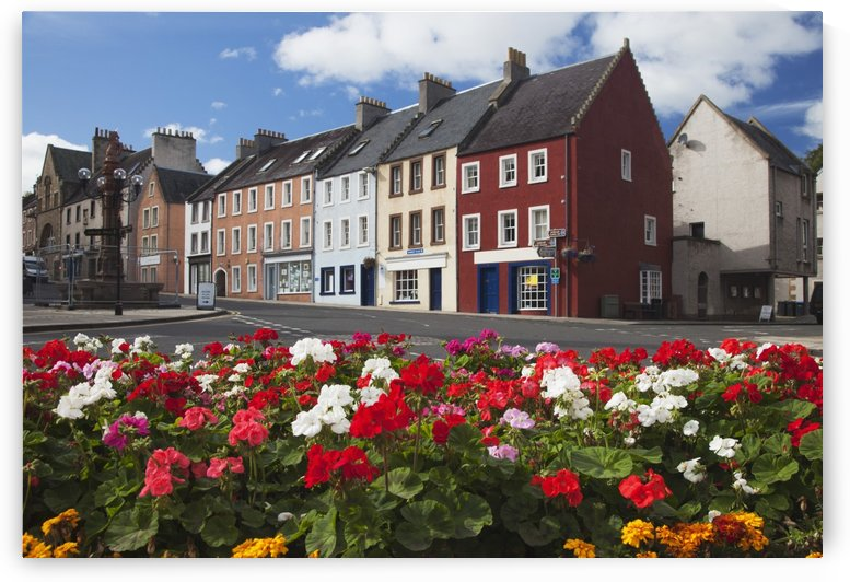 Flowers Along A Street In A Residential Area; Jedburgh, Scottish Borders, Scotland by PacificStock