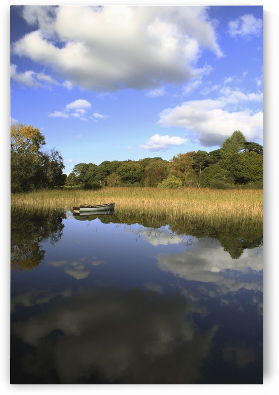 A Boat Sitting In The Water Along The Tall Grass In Killarney National Park In Munster Region; County Kerry, Ireland by PacificStock
