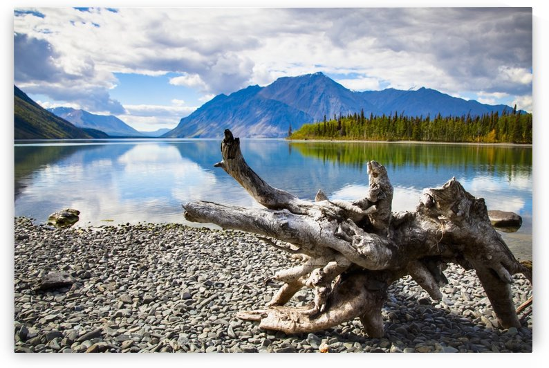 Lake Kathleen In Kluane National Park And Reserve In The Yukon Wilderness; Haines Junction, Yukon Territory, Canada by PacificStock