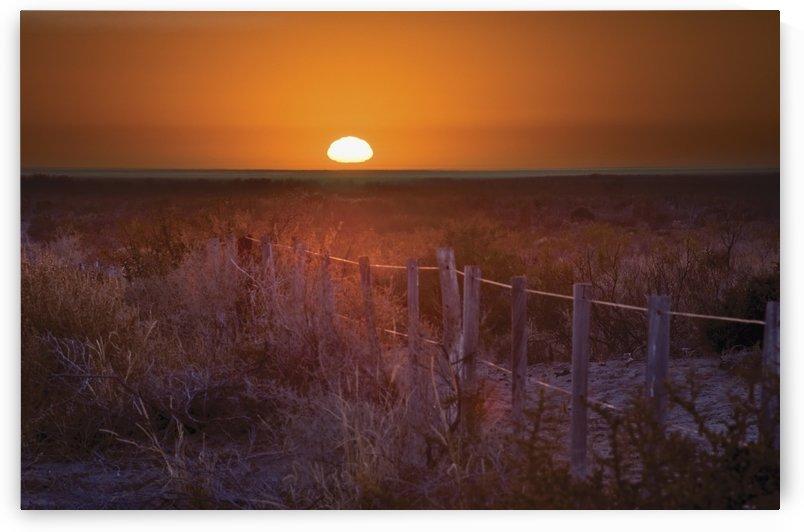 Sunrise Over The Pampa Of Argentina; San Rafael, Mendoza, Argentina by PacificStock