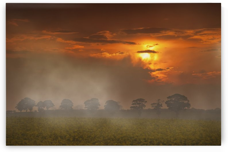 The Red Glow Of A Sunset And Fog Over A Field; Northumberland, England by PacificStock