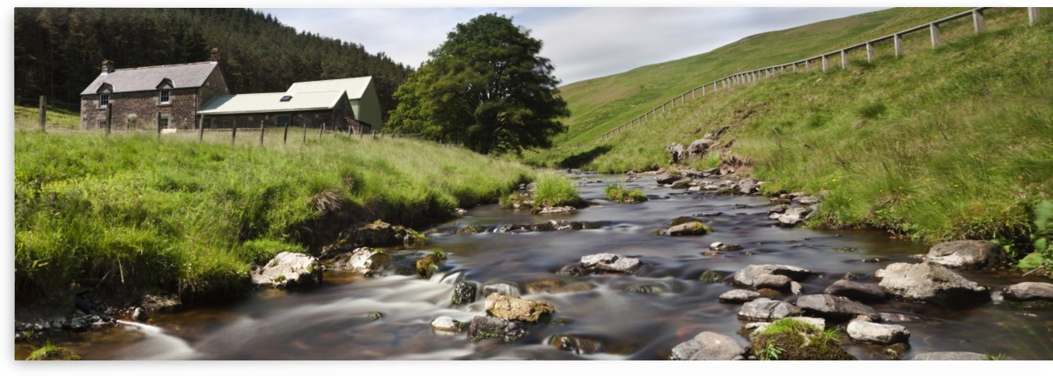 A Creek Running Past Houses; Cheviot Hills, Northumberland, England by PacificStock