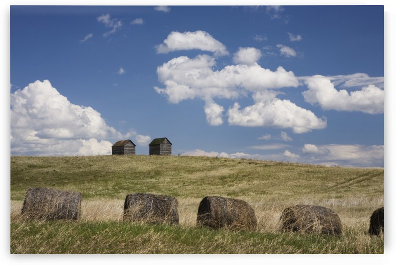 Old Sheds In A Field With Hay Bales; Winnipeg, Manitoba, Canada by PacificStock