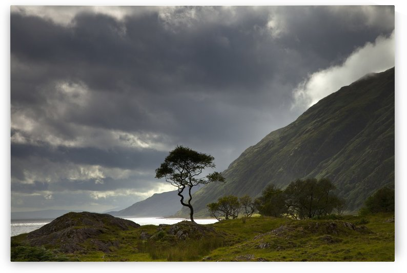 Dark Clouds Over A Landscape Along The Coast; Ardnamurchan, Argyll, Scotland by PacificStock