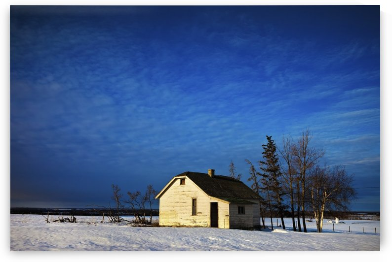 An Abandoned Homestead On A Snow Covered Field; Alberta, Canada by PacificStock