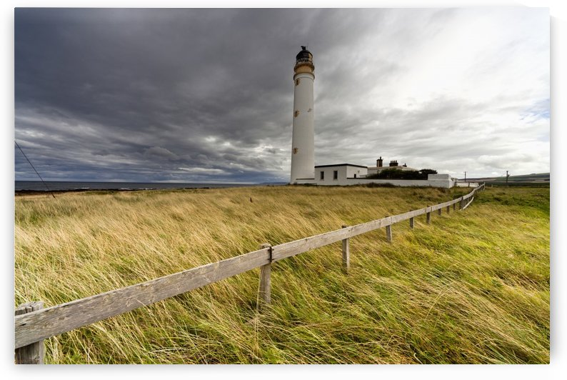 Long Grass Blowing In The Wind Beside Barns Ness Lighthouse; Scottish Borders, Scotland by PacificStock