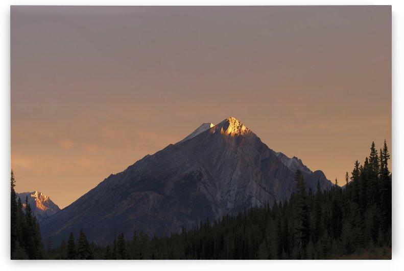 Sunrise Lights Up A Mountain Peak; Alberta, Canada by PacificStock