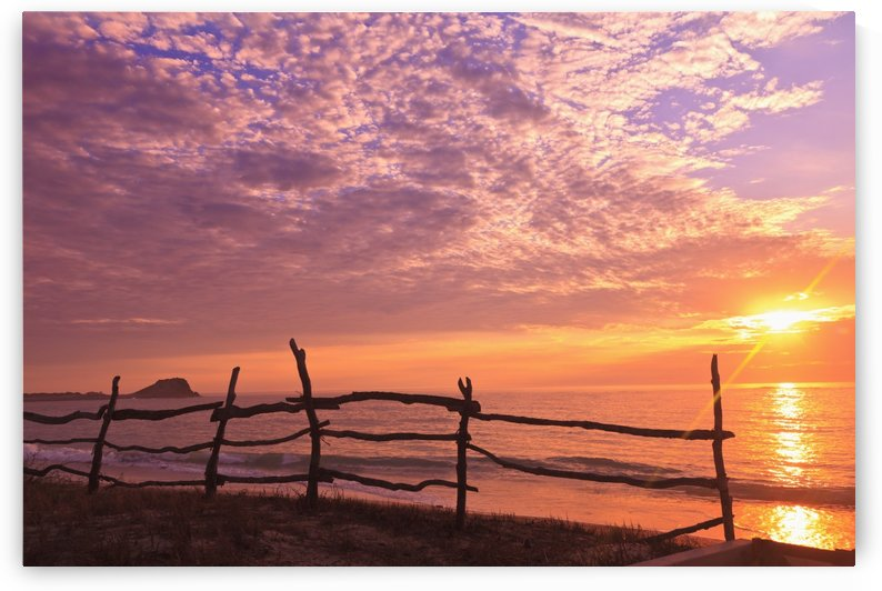 A Fence Along The Water's Edge At Sunrise At Cabo Pulmo; Baja California Sur, Mexico by PacificStock