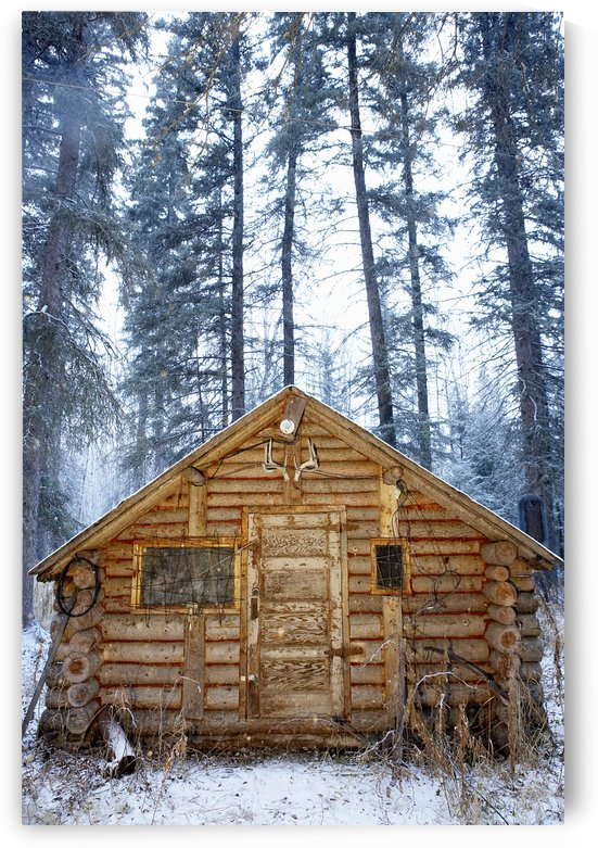 Hunting Cabin, Alberta by PacificStock