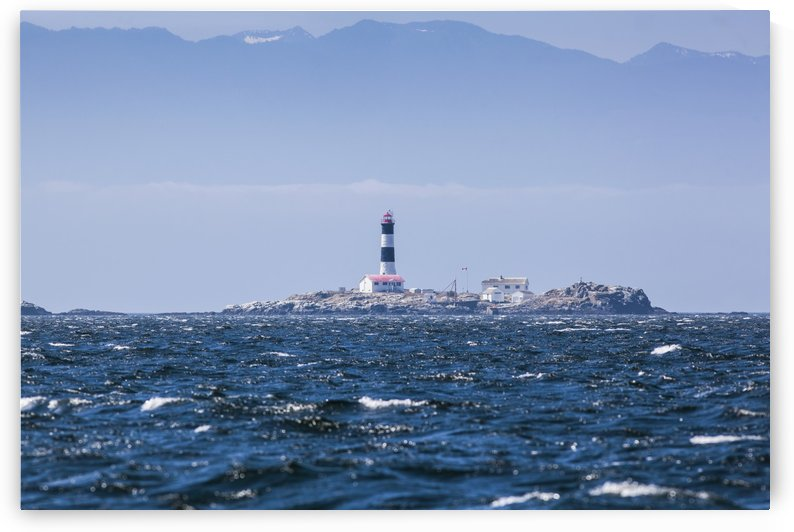 Race rocks lighthouse is situated on the juan de fuca strait near the southern tip of vancouver island;British columbia canada by PacificStock