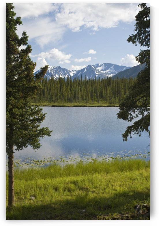 Scenic View Of A Lake In Denali National Park With The Alaska Range In The Background During Summer by PacificStock