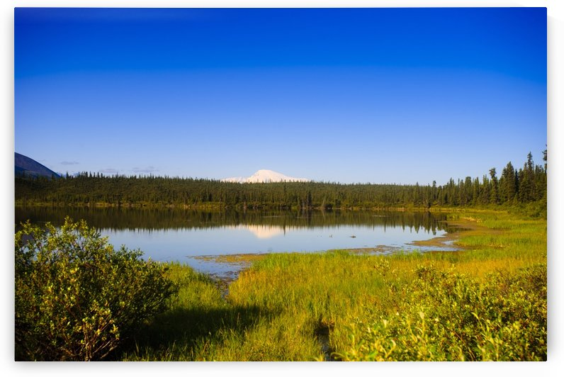 Mount Sanford Reflecting In Twin Lakes, Wrangell Saint Elias National Park, Southcentral Alaska, Summer by PacificStock
