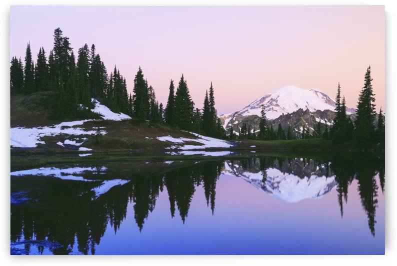 Mount rainier reflected in a pond at sunset near tipsoo lake mount rainier national park;Washington united states of america by PacificStock